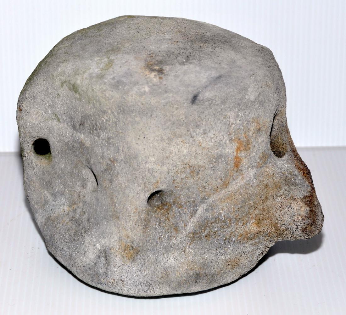 Whale vertebrae mineralized fossil - 3