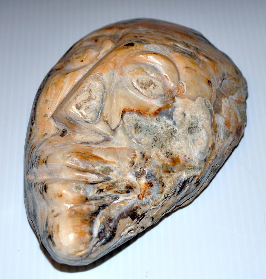 Oyster shell mask prehistoric - 3