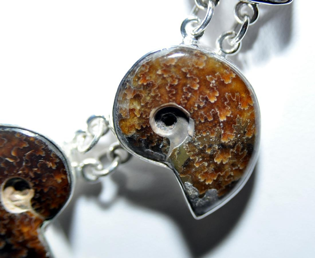 Sterling ammonite necklace fossil - 3