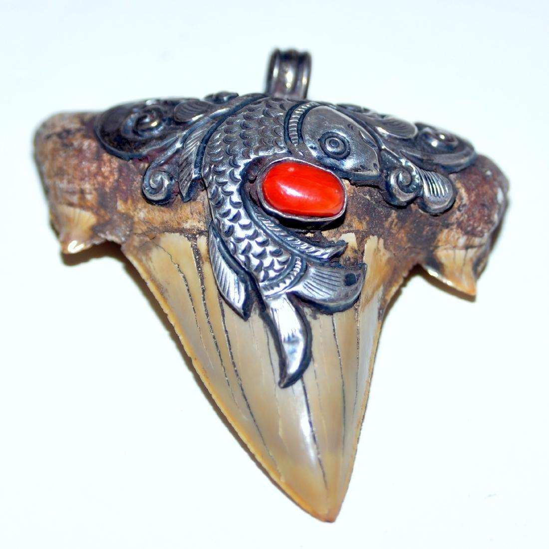 Megaladon sharks tooth pendant