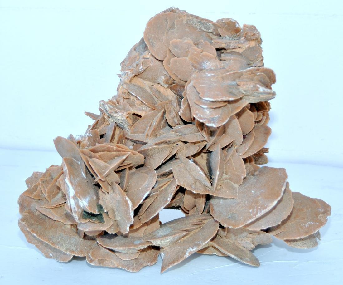 Desert rose mineral specimen large