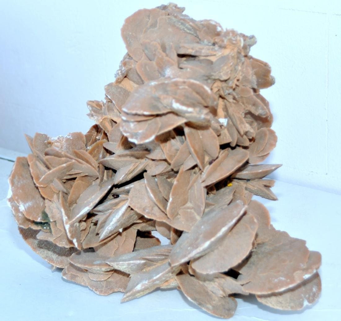 Desert rose mineral specimen large - 5