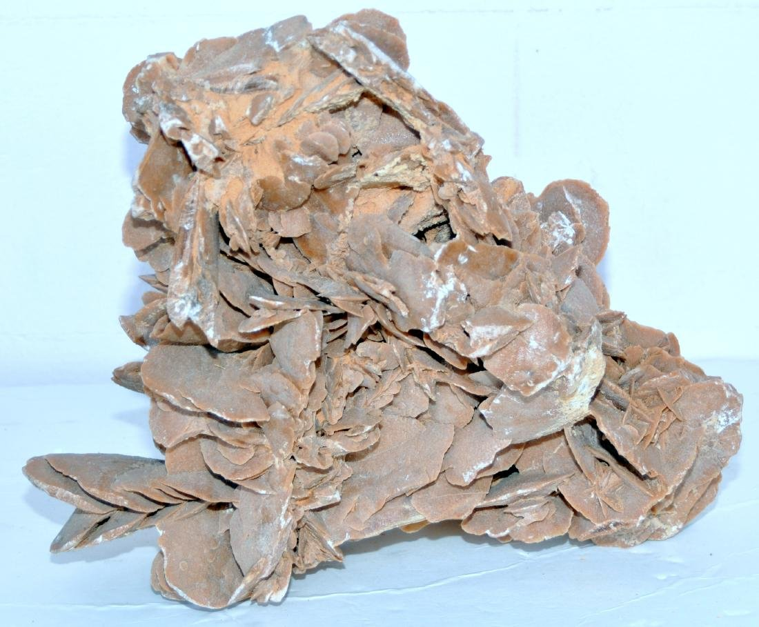 Desert rose mineral specimen large - 6