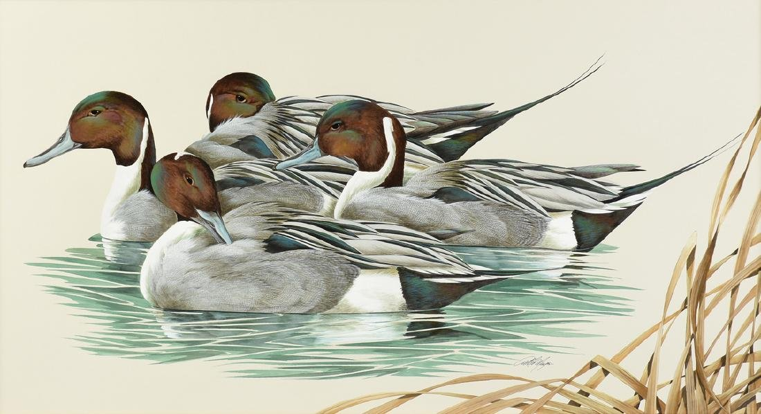 """ART LEMAY (American 21st Century) A PAINTING, """"Pintails"""