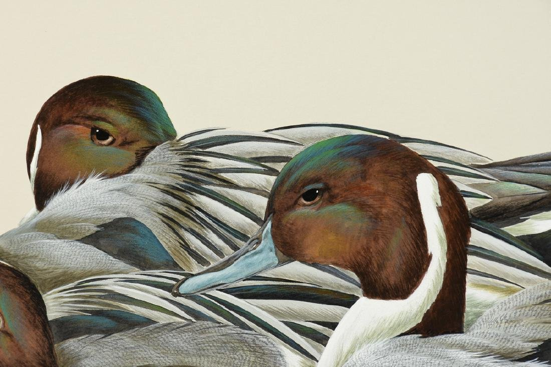 """ART LEMAY (American 21st Century) A PAINTING, """"Pintails - 6"""