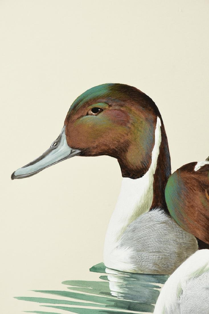"""ART LEMAY (American 21st Century) A PAINTING, """"Pintails - 8"""