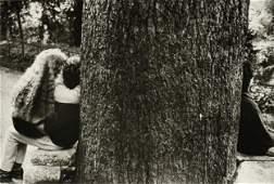 "ÉDOUARD BOUBAT (French 1923-1999) A PHOTOGRAPH, ""Tree"