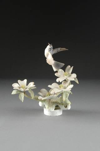 7: A ROYAL WORCESTER BLUE GRAY GNATCATCHER AND DOGWOOD,