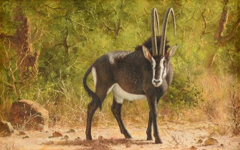 """PAUL ROSE (South African 1931-2018) A PAINTING, """"Sable"""