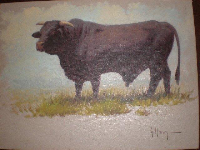 1H: G. (GERALD HARVEY JONES) HARVEY (American/Texas b.