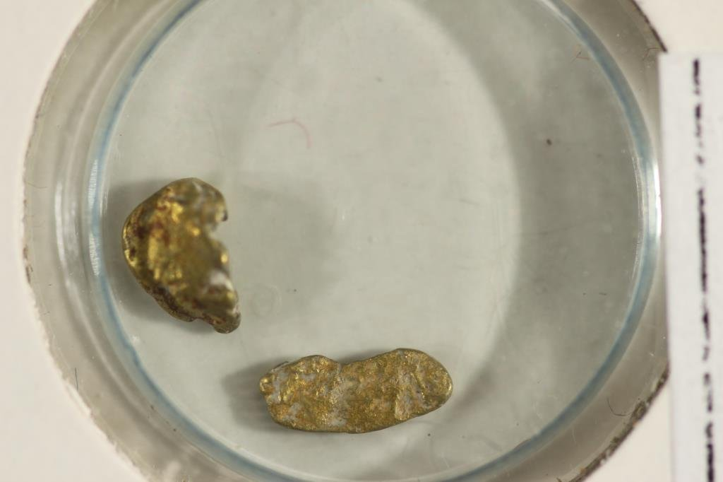 PLACER GOLD NUGGETS FROM RELIEF HILL NEVADA