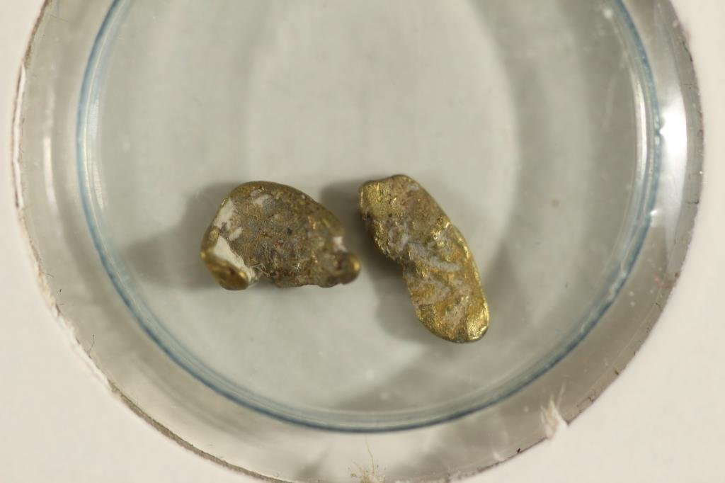 PLACER GOLD NUGGETS FROM RELIEF HILL NEVADA - 2
