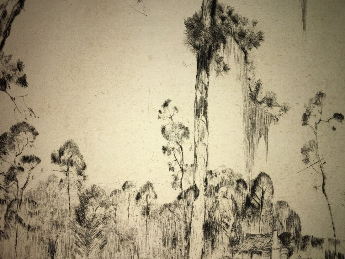 "Alfred Hutty, Am. ""Carolina Pines"" 1935, drypoint - 7"