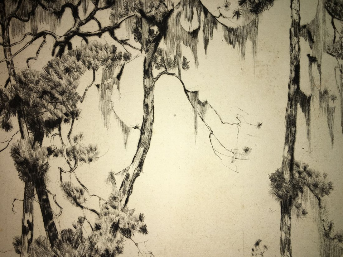 "Alfred Hutty, Am. ""Carolina Pines"" 1935, drypoint - 9"