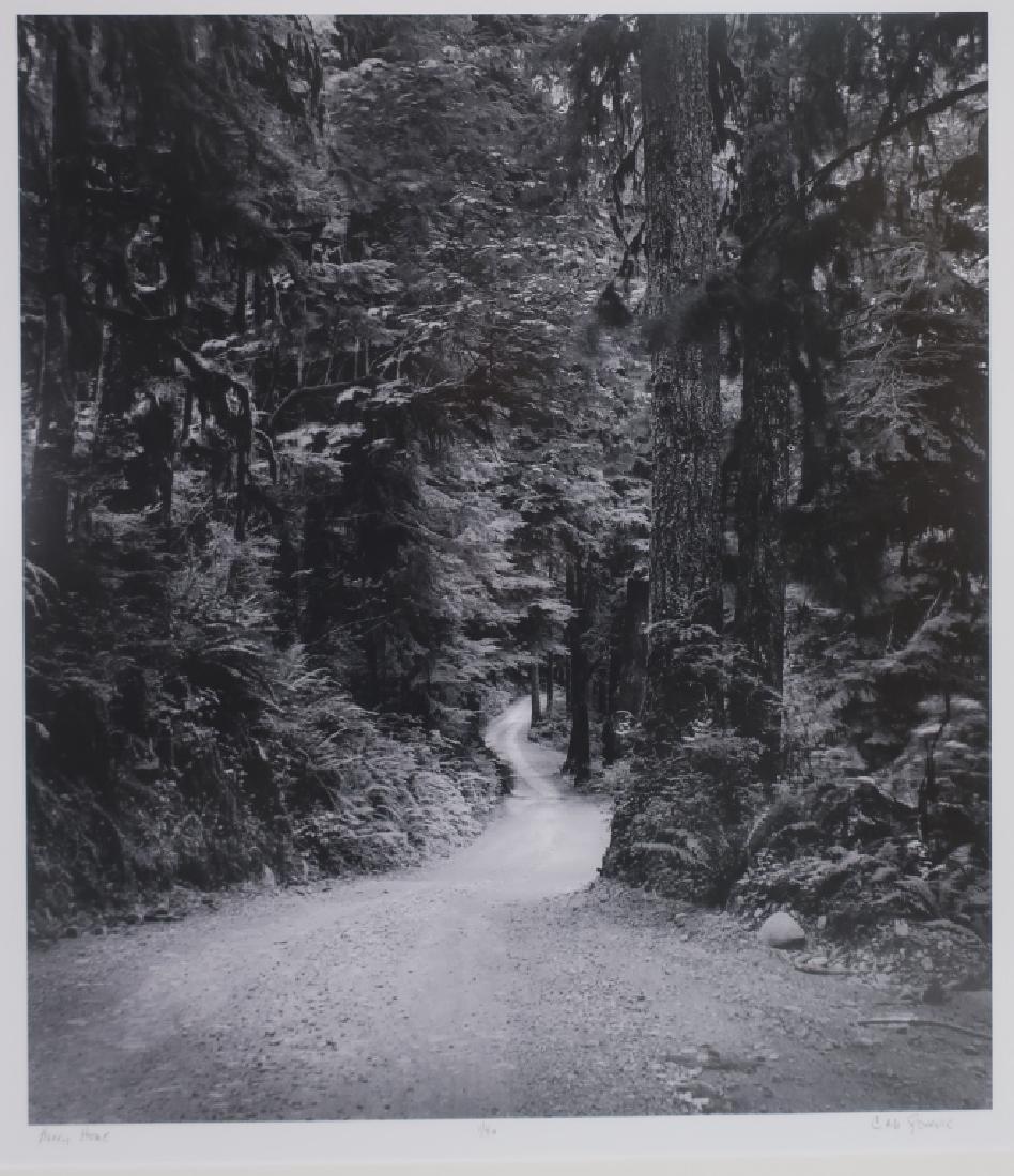 5 Cali Gorevic, Photograph Giclee Prints, 20th c. - 2