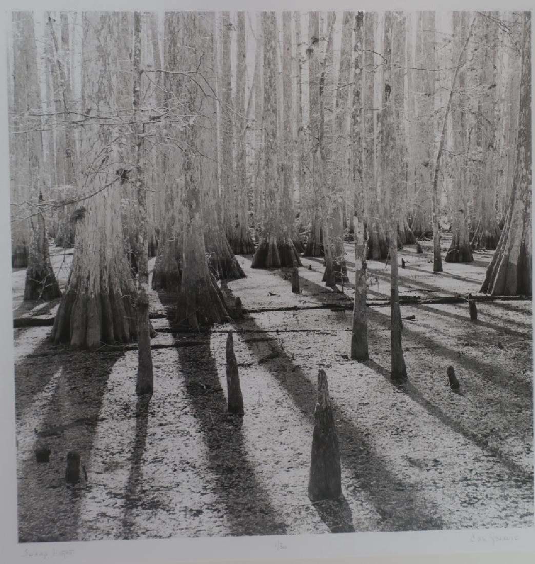 5 Cali Gorevic, Photograph Giclee Prints, 20th c. - 4