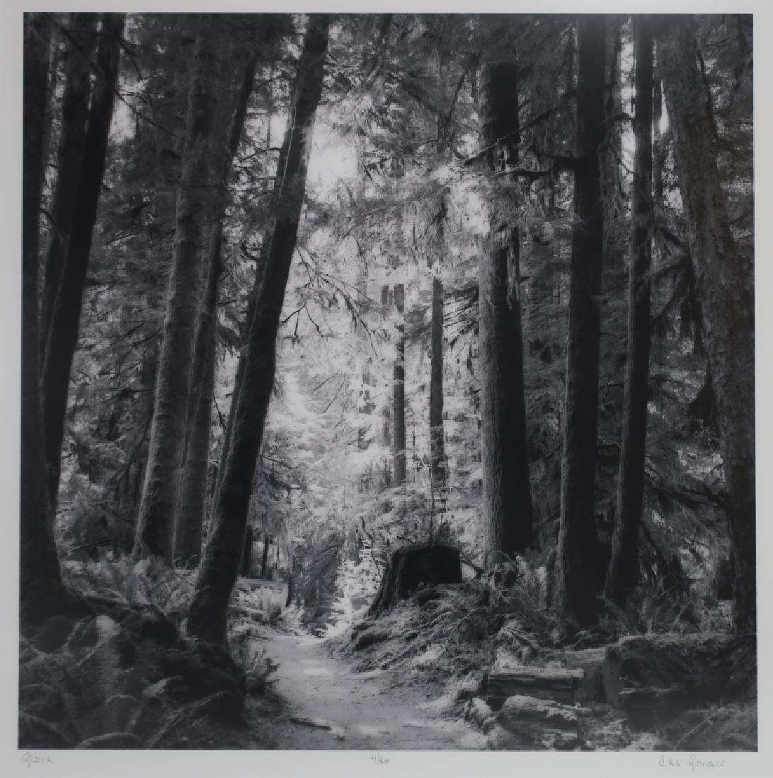 5 Cali Gorevic, Photograph Giclee Prints, 20th c. - 5
