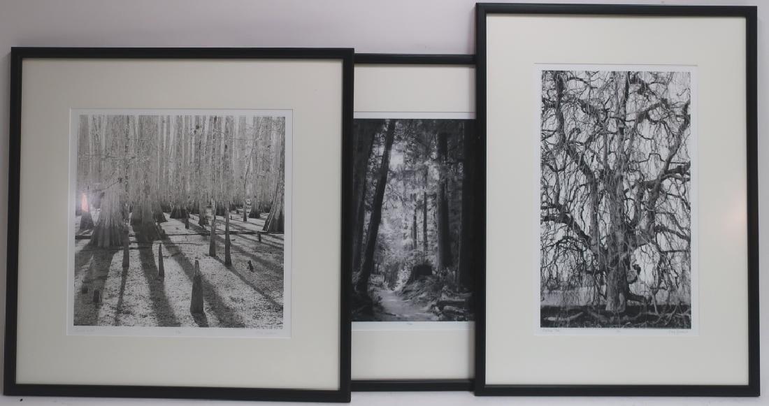 5 Cali Gorevic, Photograph Giclee Prints, 20th c. - 6