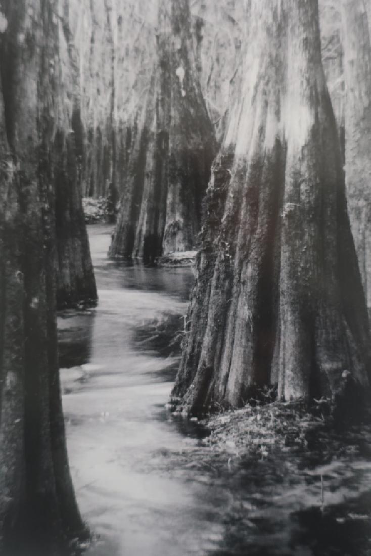 5 Cali Gorevic, Photograph Giclee Prints, 20th c. - 9