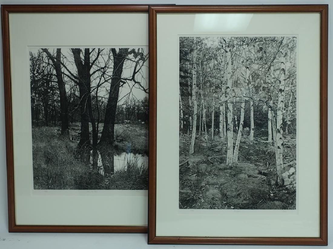 2 Barbara Pihos Rain & Birches Etchings 20th c.