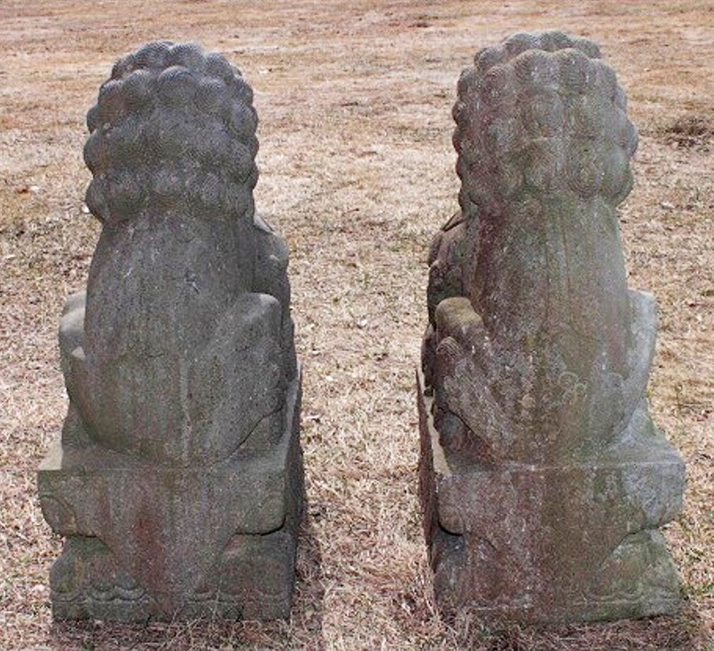 Large Stone Chinese Foo Lions, 19/20th C. - 8