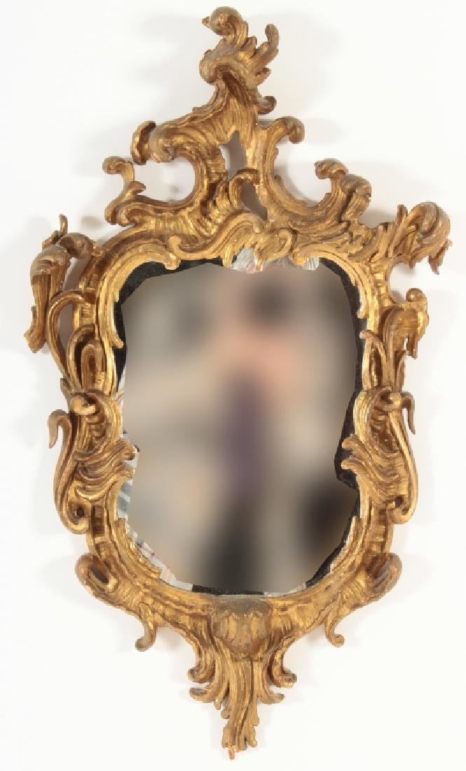 18th C. Rococo Gilt Wood Carved Mirror