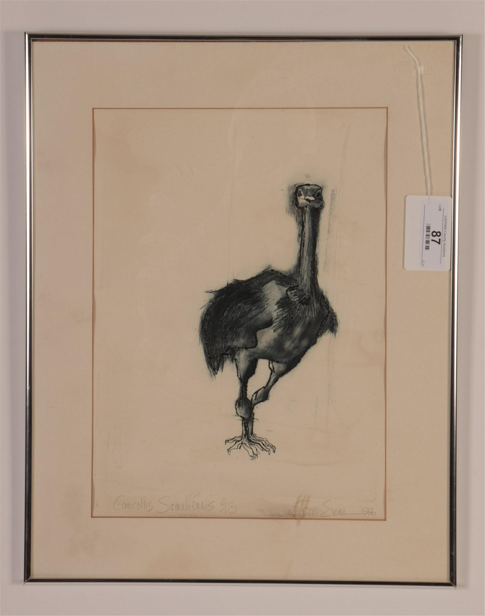 Toni Evins, Mid 20th C., Bird lithograph