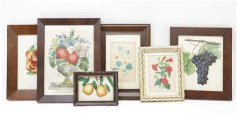 6 Fruit and Flower Prints Currier