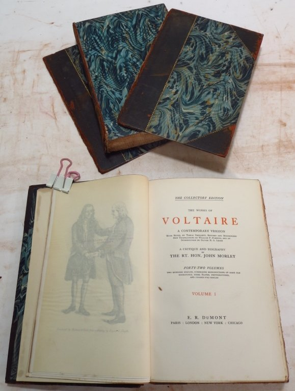 Moliere, Voltaire & Hugo Leather Bound Collections - 6