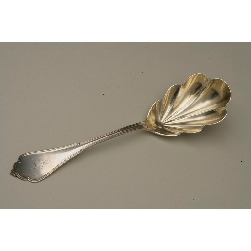 Silver Berry Spoon