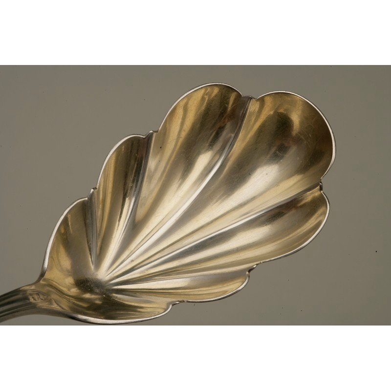 Silver Berry Spoon - 3
