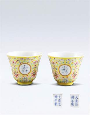 Pair of Chinese Famille Rose Cup Qing Guangxu Mark and