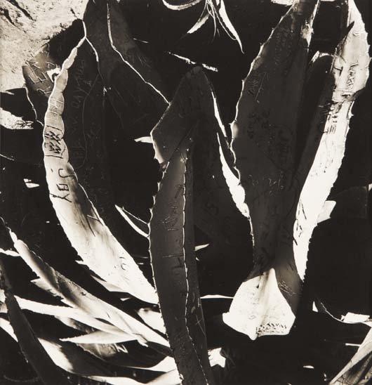 1022: WALKER EVANS, 1903-1975 Untitled (California), 19