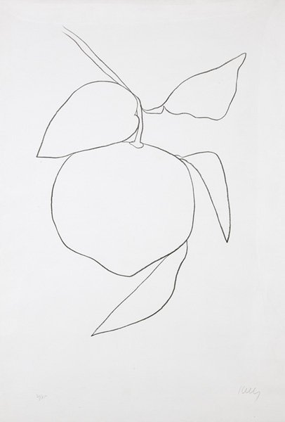 2263: ELLSWORTH KELLY, b. 1923 Suite of Plant Lithograp