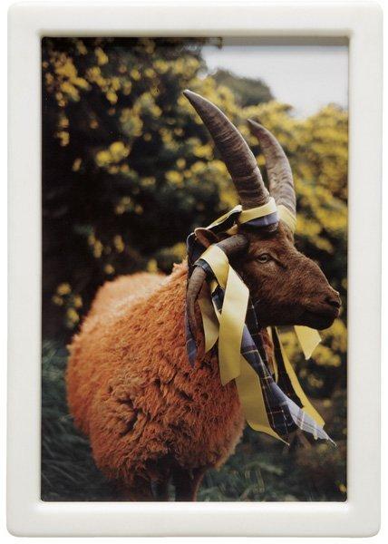 107: MATTHEW BARNEY, Cremaster 4: Loughton Ram, 1994