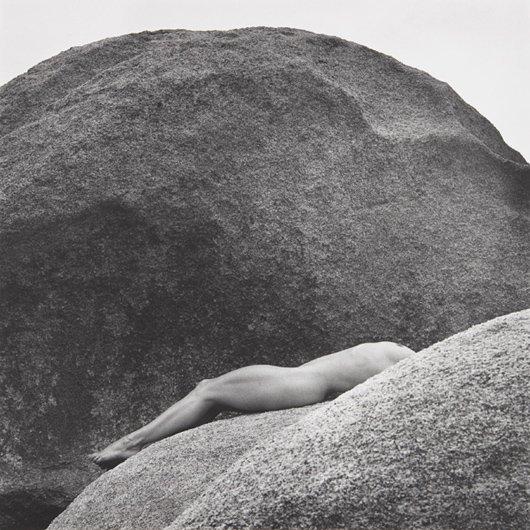 5: ROBERT MAPPLETHORPE, Lisa Lyon, 1980