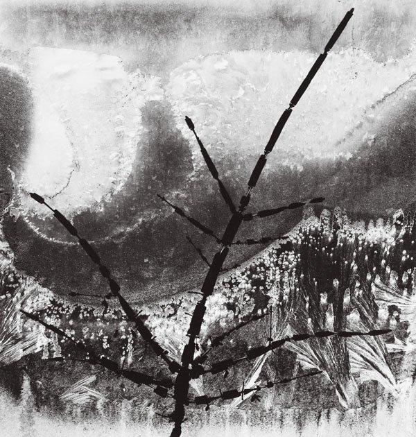 199:  MINOR  WHITE  (American, 1908-1976)  RITUAL BRANC