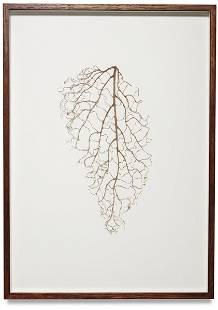 RIVANE NEUENSCHWANDER, Untitled, 1997