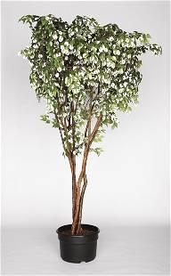 GABRIEL OROZCO, Arbol Lunar (Moon Tree), 1996
