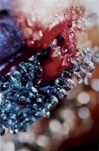 MARILYN MINTER, Bluer Tears, 2004