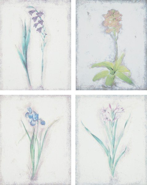 15: Artist Unknown, [Purple Hued Flowers on Antique Bac