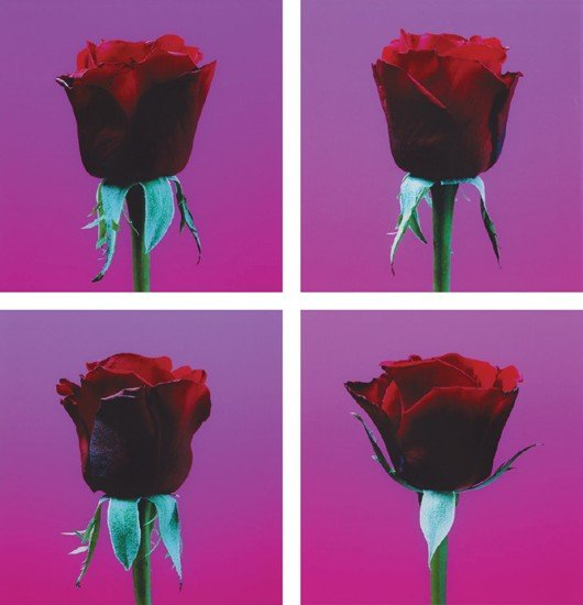 23: Elisabeth Montagnier? [Dark Red Roses] (4 works)
