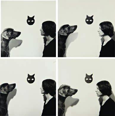 212: WILLIAM WEGMAN, Looking at, 1973