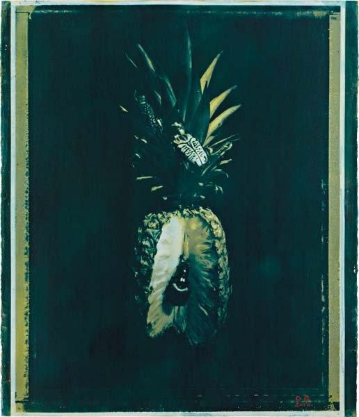 "3: OBERTO GILI, ""Pineapple Eaten by Japanese Beetle"", 2"