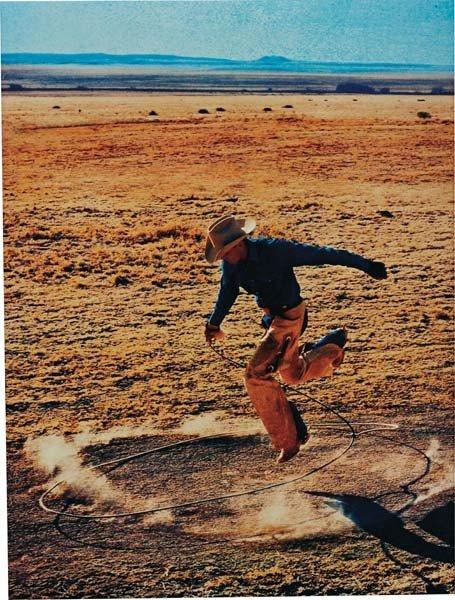 14: RICHARD PRINCE, Untitled (Cowboy), 2003