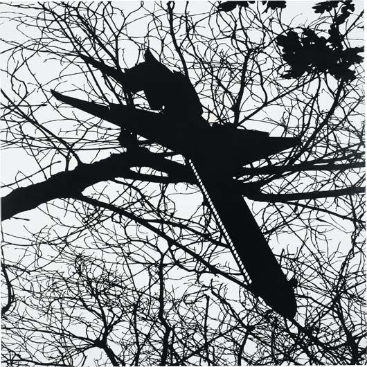 33: CARLOS AMORALES, The Nightlife of a Shadow II, 2005