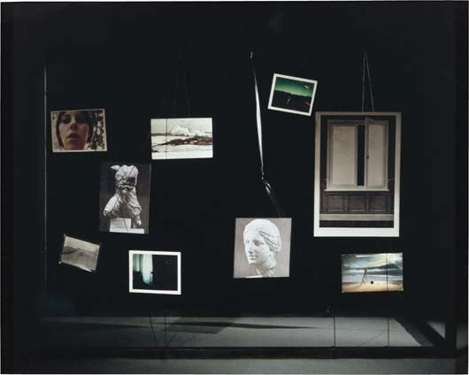 5: SARA VANDERBEEK, The Field Glass, 2006