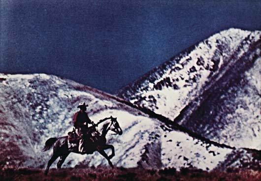 2: RICHARD PRINCE, Untitled #14, 1980-1984