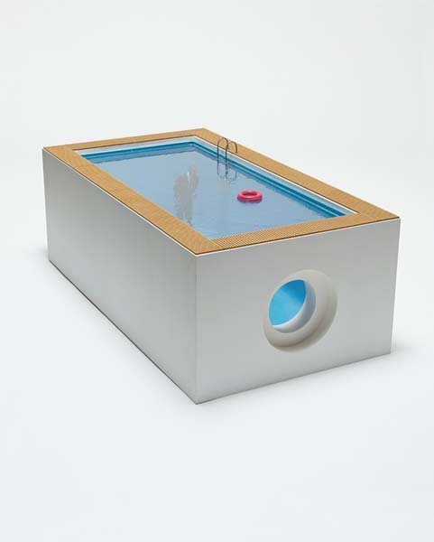 8: LEANDRO ERLICH, Swimming Pool, 1998