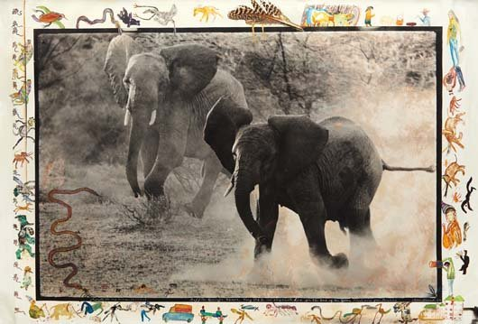 PETER BEARD, Buffalo Springs, Kenya, July, 1960